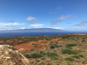 Lanai's Newspaper Is Now Owned By The Company That Owns Lanai