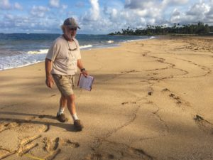 Brittany Lyte: Kauai's Shifting Sands Offer Clues To Beach's Future
