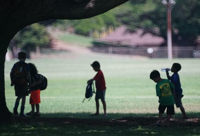 Kids enjoy some shade at Kapiolani Park.