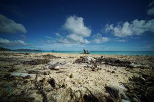 Ocean Plastic Pollution Prompts Lawsuit