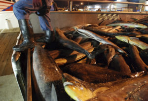 Hawaii Longline Group Wants To Defend Licenses For Foreign Fishermen