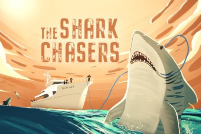 The Shark Chasers