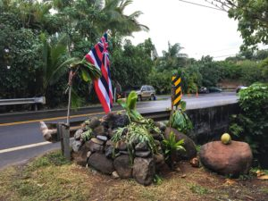 No Sign Of Authorities Yet As Occupation Of Kauai Resort Continues