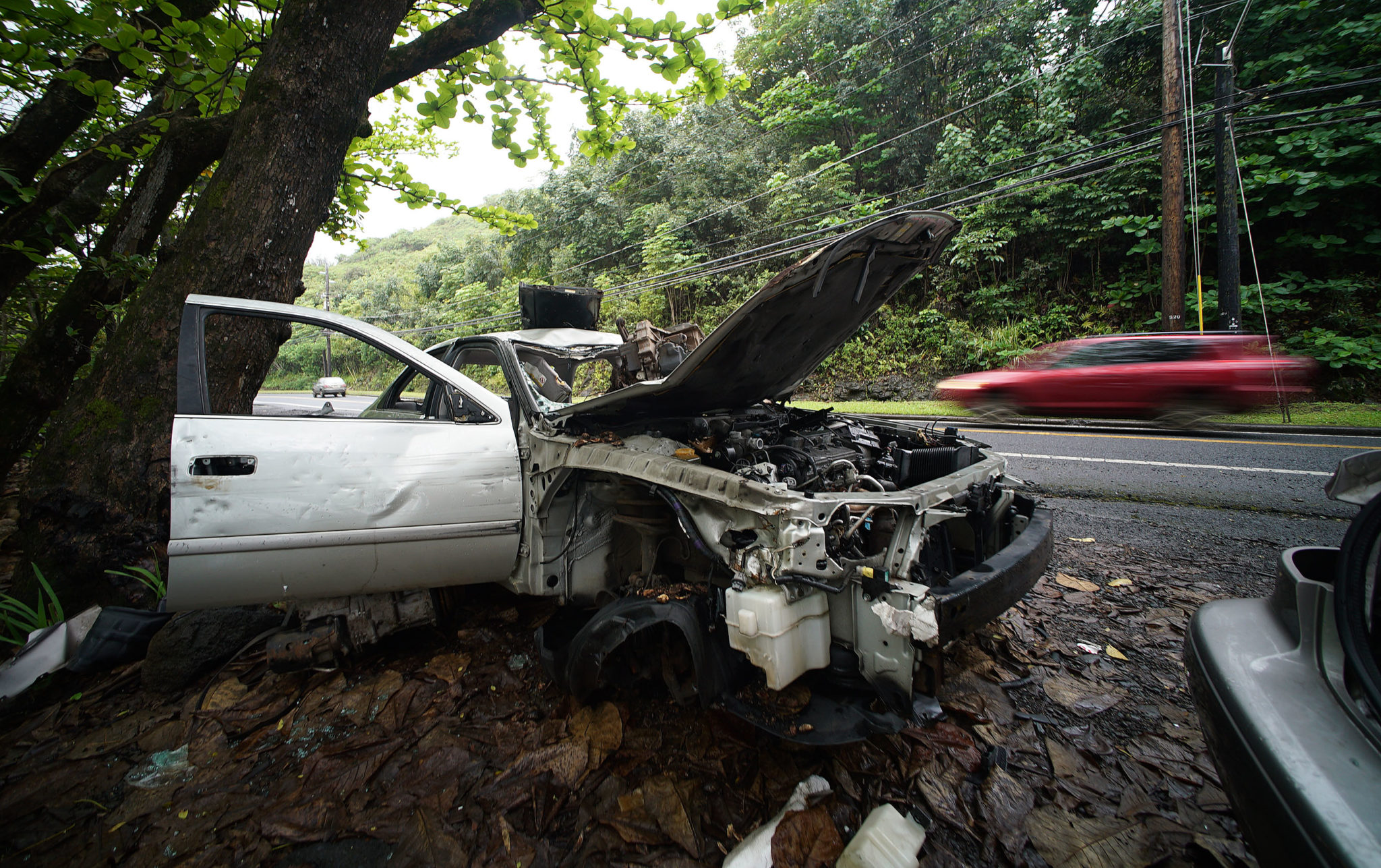 <p>A pair of junkers near the Kahana Valley. Two bills in the Legislature would require counties to remove abandoned cars from public roads<span class=