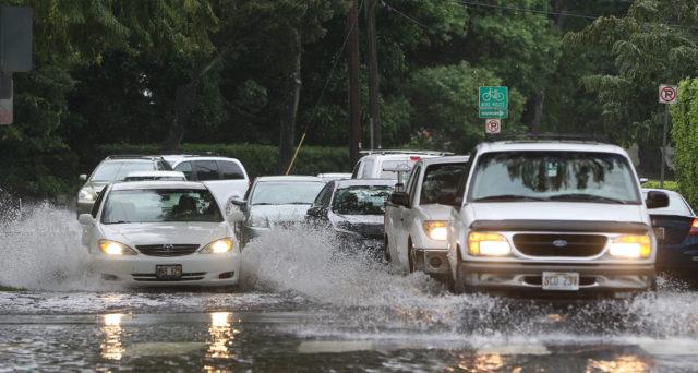 Drivers head mauka on Oahu Avenue near the E. Manoa intersection after torrential downpours hit Oahu.