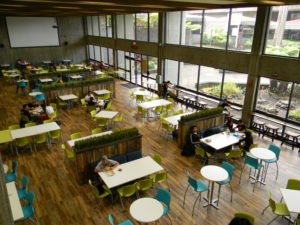 Big Island: UH Hilo Enrollment Plunges Even As Campus Grows