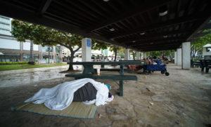 Are Waikiki's Public Pavilions Hopelessly Crime-Ridden?
