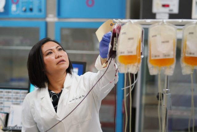 Blood Bank of Hawaii President CEO Kim-Anh Nguyen MD PHD in their lab.