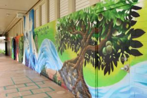 Reflections From A First-Year Teacher In Hawaii's Public School System