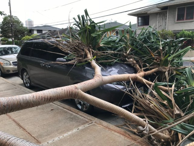 Hurricane Lane: Live Updates - Honolulu Civil Beat