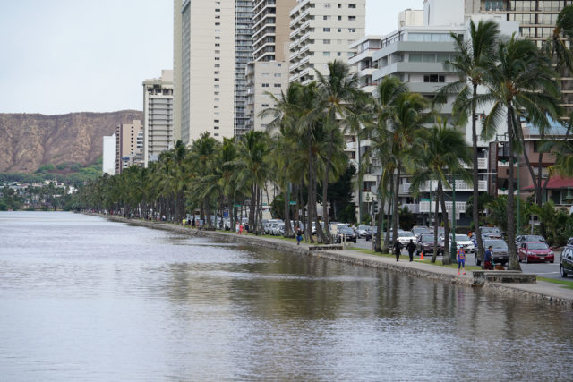 Water levels due to King Tides along the Ala Wai Canal during a high tide at 3pm at the same time that Hurricane Hector was skirting south of the Hawaiian Islands. If Hurricane Hector hit Oahu, this compounded w/ the King TIde could have devastated and flooded Waikiki. 9 aug 2018