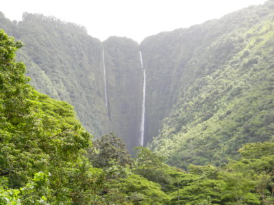 Big Island: Waipio Valley's Beauty, Danger And Uncertain Future