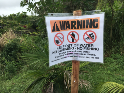 Big Island: Residents Say Dairy Is Still Polluting Their Small Town