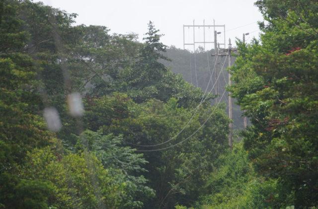 Hawaiian Electric Powerlines Koolau Palolo Valley Preparedness 3.