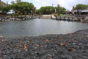 Big Island: Why A New Beach Created By Lava May Doom A Popular Boat Ramp