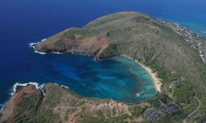 Scientists Find Larger Fish, Clearer Water During Hanauma Bay Closure