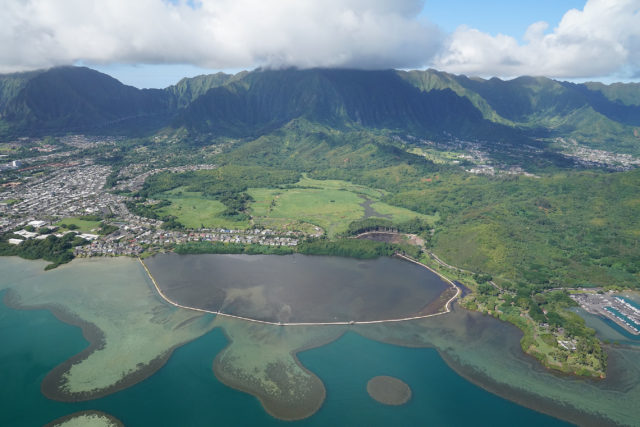 """According to the Heeia fishpond site, """"Located in He'eia Uli on the island of Oahu, He'eia Fishpond is a walled (kuapā) style fishpond enclosing 88 acres of brackish water. The kuapā is built on the Malauka`a fringing reef that extends from the shoreline surrounding the pond out into Kāne`ohe Bay. Built approximately 600-800 years ago by the residents of the area, the kuapā is possibly the longest in the island chain measuring about 1.3 miles (7,000 feet) long and forms a complete circle around the pond. This is unique as most other fishpond walls are either straight lines or half circles connecting one point of shoreline to another."""""""
