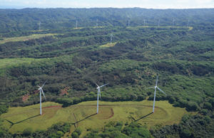 Wind Farm Submits Study On Endangered Species Impacts