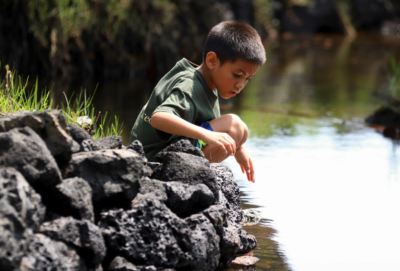 Be The Changemaker In Hawaii Education