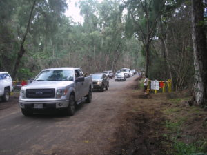 Big Island: Puna Park Cut Off By Lava Reopens, Attracting Hundreds
