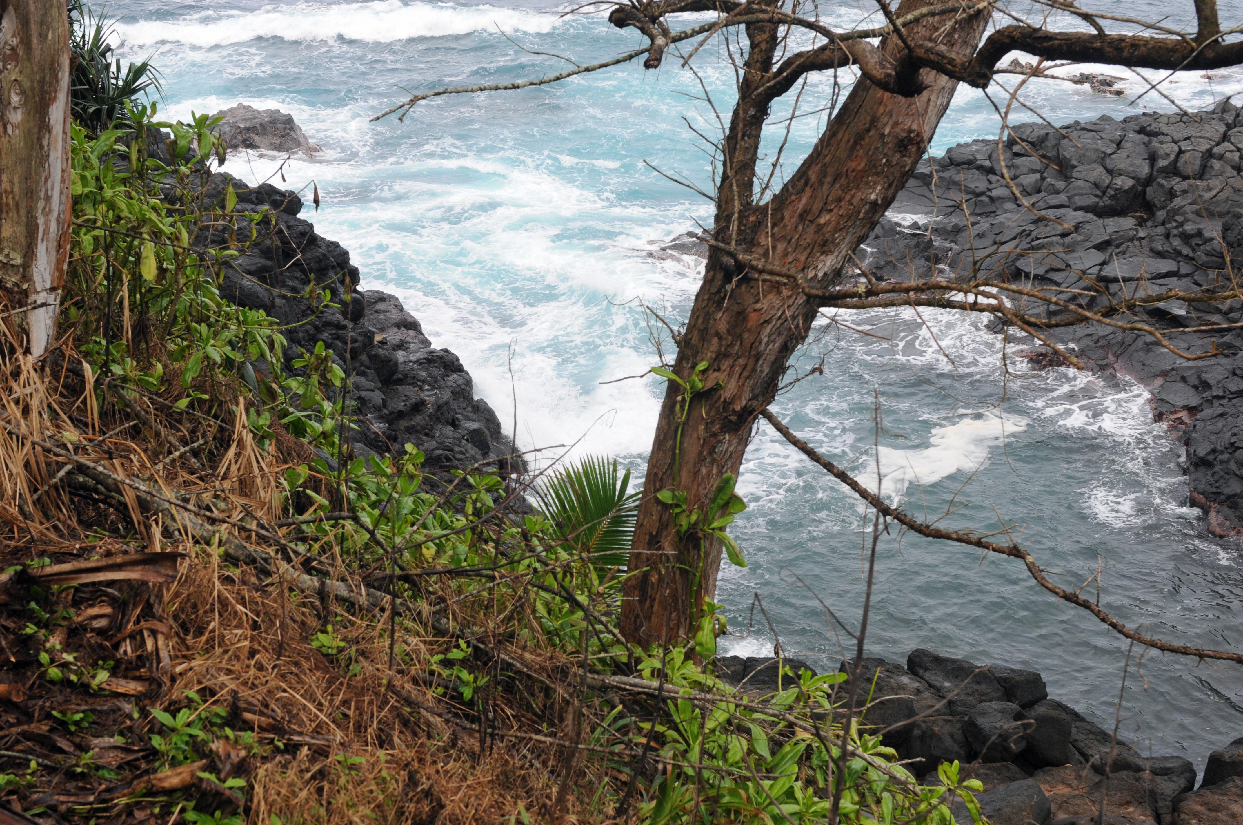 Kauai: Tourists Keep Coming To Queen's Bath Despite The