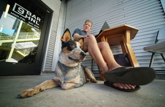Jim Guss watches his friends dog namedWally outside Bar9HNL coffee shop. Wally was relaxing waiting for his owner Frandee Lum from Hawaii Island.