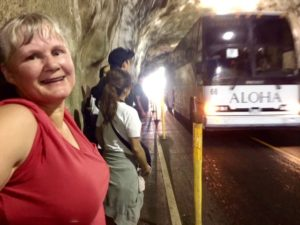 Denby Fawcett: A Death Trap At The Entrance To Diamond Head