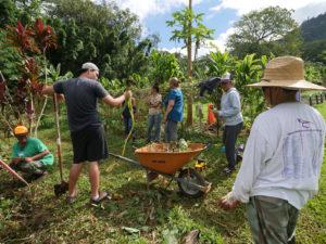 SLIDESHOW: Growing Food, Fixing Bikes — This Is Kalihi's Cornerstone