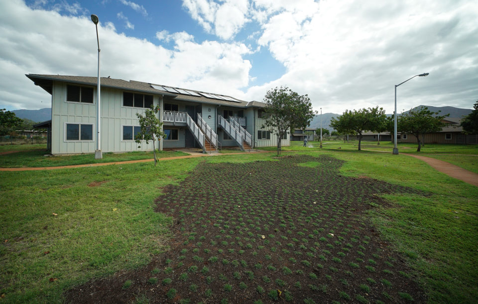 State Ohana Zone Money Is Beginning To Produce Housing, Services