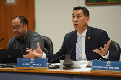 Chair Kai Kahele gestures during water rights hearing with left, Ways and Means chair Donovan.
