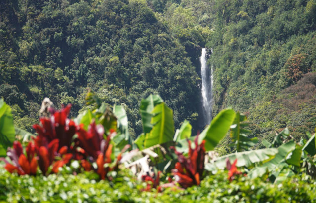 Waterfall in Wailua Maui.