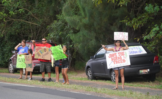 Waimanalo Sherwood Forest Demonstrators along Kalanianiole Highway.