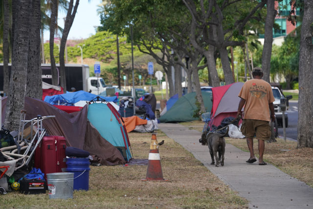 Homeless Encampment at Kakaako Gateway Park as a person walks his dog on a leash.