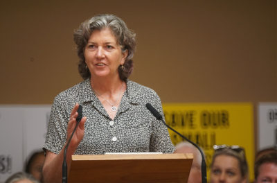 Sen. Laura Thielen Won't Seek Re-Election To Hawaii Senate