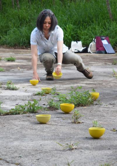 Setsuko Winchester bowls at Honouliuli v1.