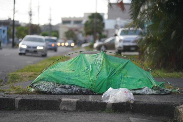 Homeless tent with sleeping person inside along Beretania Street.