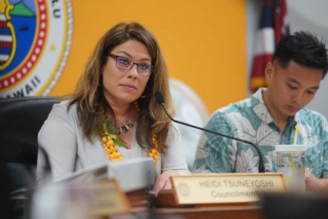 Parks Chair Heidi Tsuneyoshi during committee meeting with scores on hand to testify about Waimanalo Sherwood Forest.