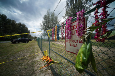 Lei draped along fence of Mokuleia Airfield after a plane crashed killing 11 people along Farrington Highway.