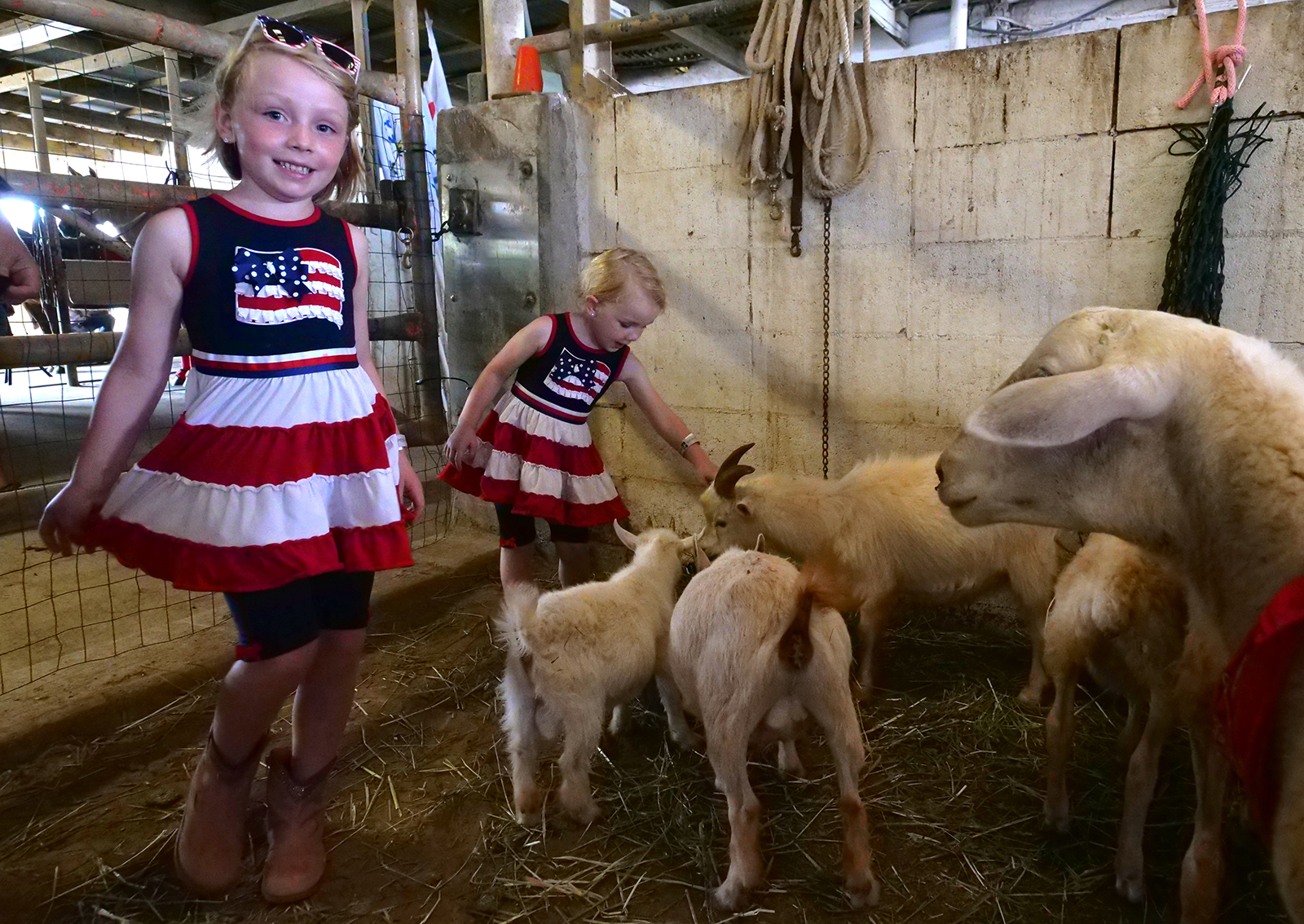 <p>Alana Miller, 6, and her sister Briella, 3, of Aiea, enjoy the petting zoo, which  featured sheep, goats, turtles and pony rides.</p>