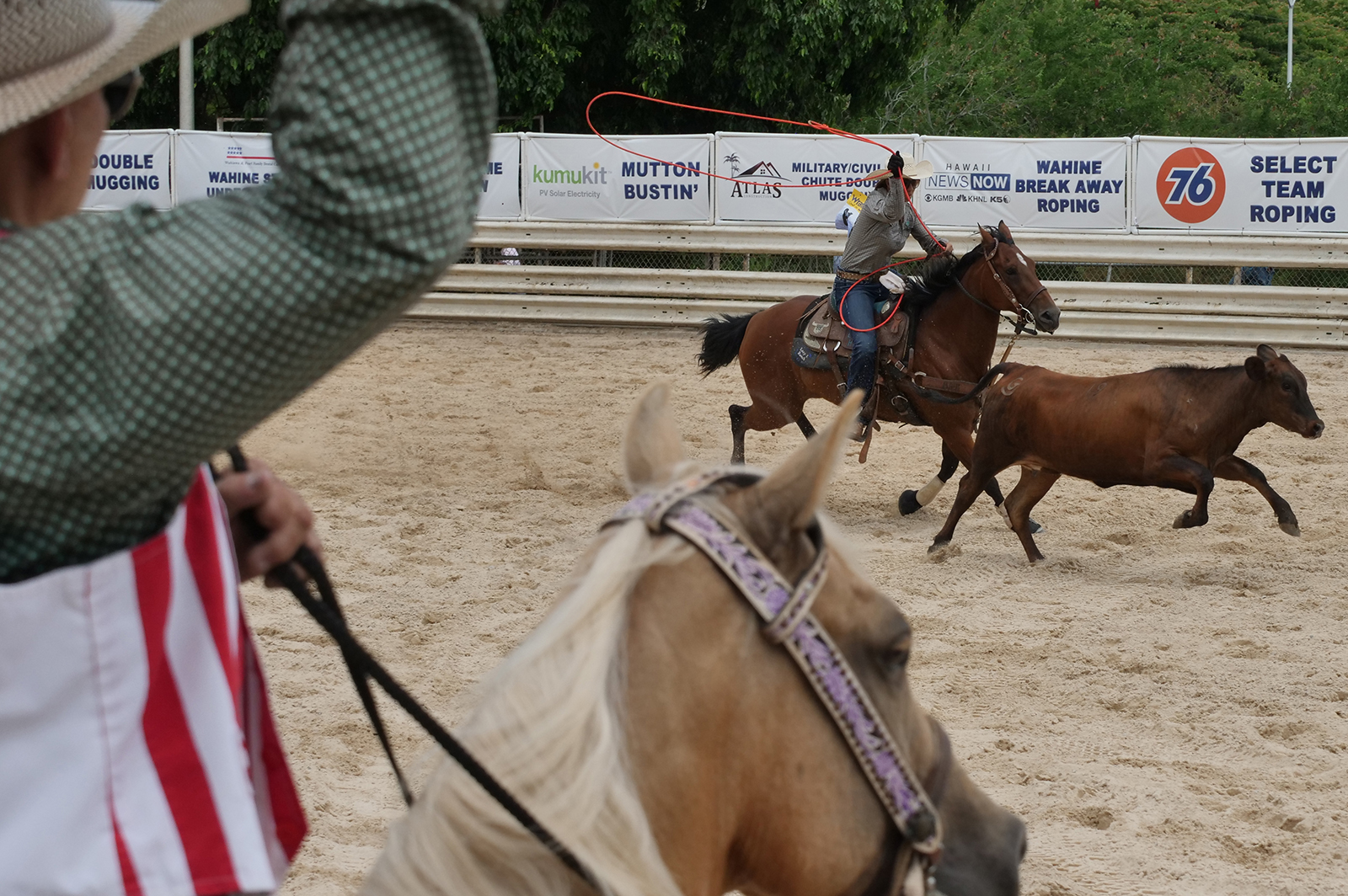 <p>A competitor in the wahine break-away roping event prepares to lasso a calf. A small string attached to the rope breaks once a calf is caught and releases a white flag signaling the end of the run.</p>