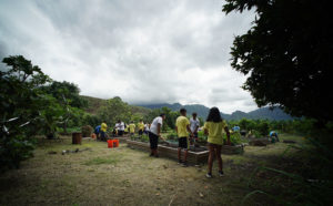 Changing Habits Yields Health Benefits At MA'O Farms In Waianae