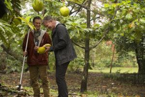 On Maui, Gordon Ramsay Whips Up A Savory Breadfruit Pie