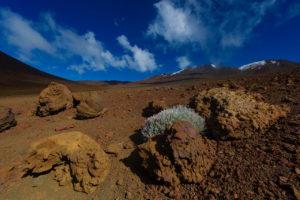 The Soft Voices Of Mauna Kea That Should Be Heard