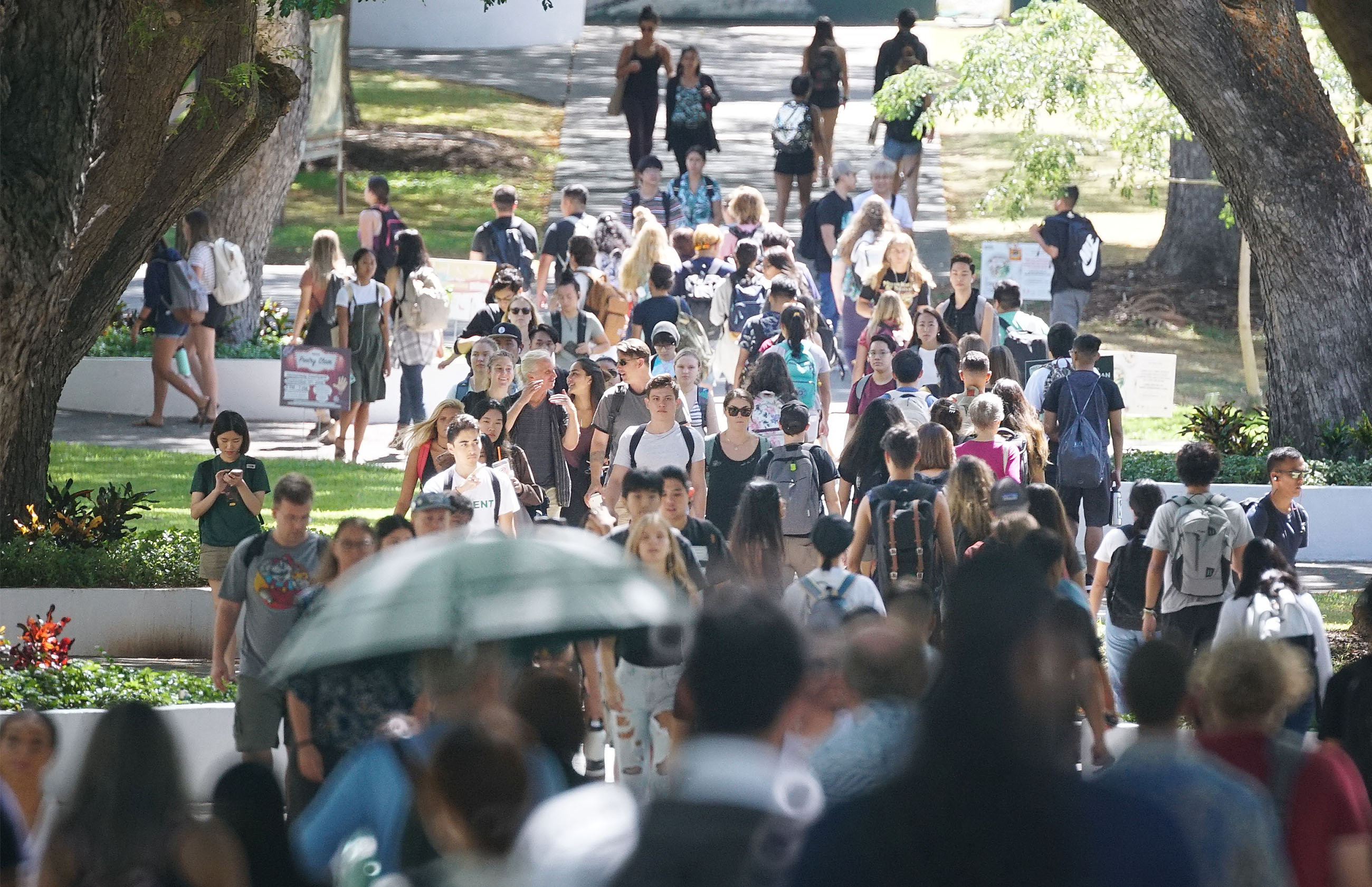 University of Hawaii at Manoa campus with students walking along the 'Mall' during change of classes.
