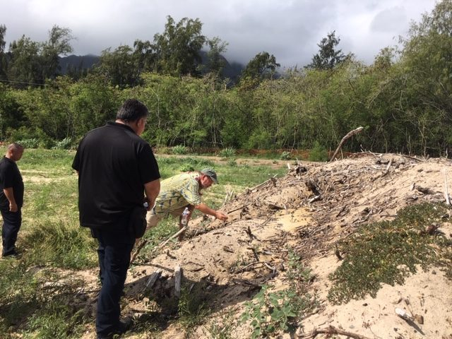 Archaeologist Patrick Kirch looks at construction debris at Waimanalo