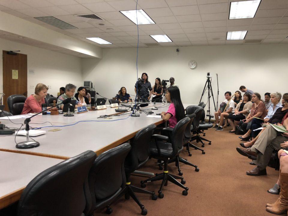 Hawaii High Schooler To Legislators: Ban Flavored E-Cigs