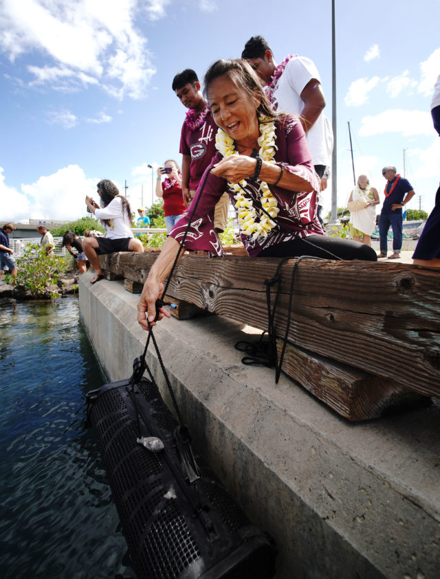 Farrington HS Teacher Diane Tom Ogata lowers cage containing baby oysters near the Marine Education Training Center located on Sand Island.