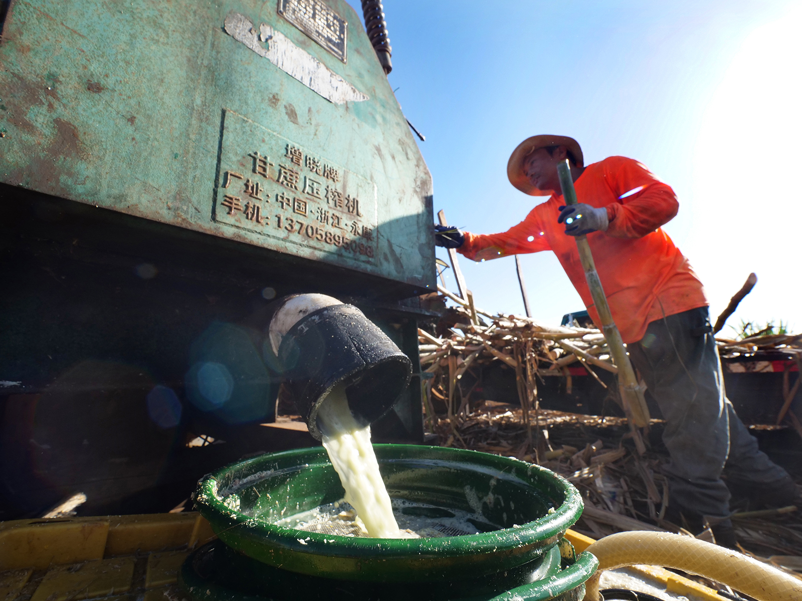 <p>Sugar cane juice pours into a bucket as cane stalks are fed into the mill press.</p>
