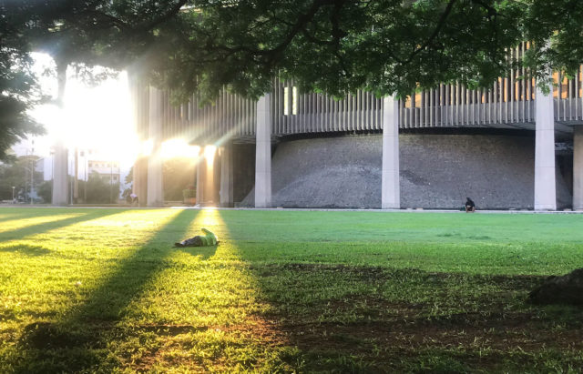 Man sleeps bathed in the golden sunrise rays on the Capitol lawn.