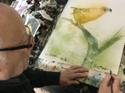 Why Gonzo Artist Ralph Steadman Drew The Endangered Kiwikiu For Us